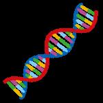 石取りゲームで遺伝的アルゴリズムの実験 その4